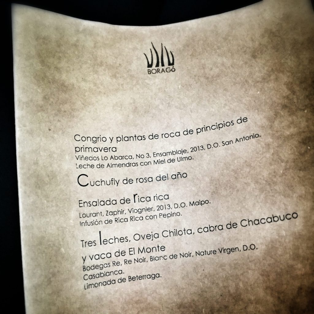 2015-11-12 tendencias-santiago-chile-borago 2