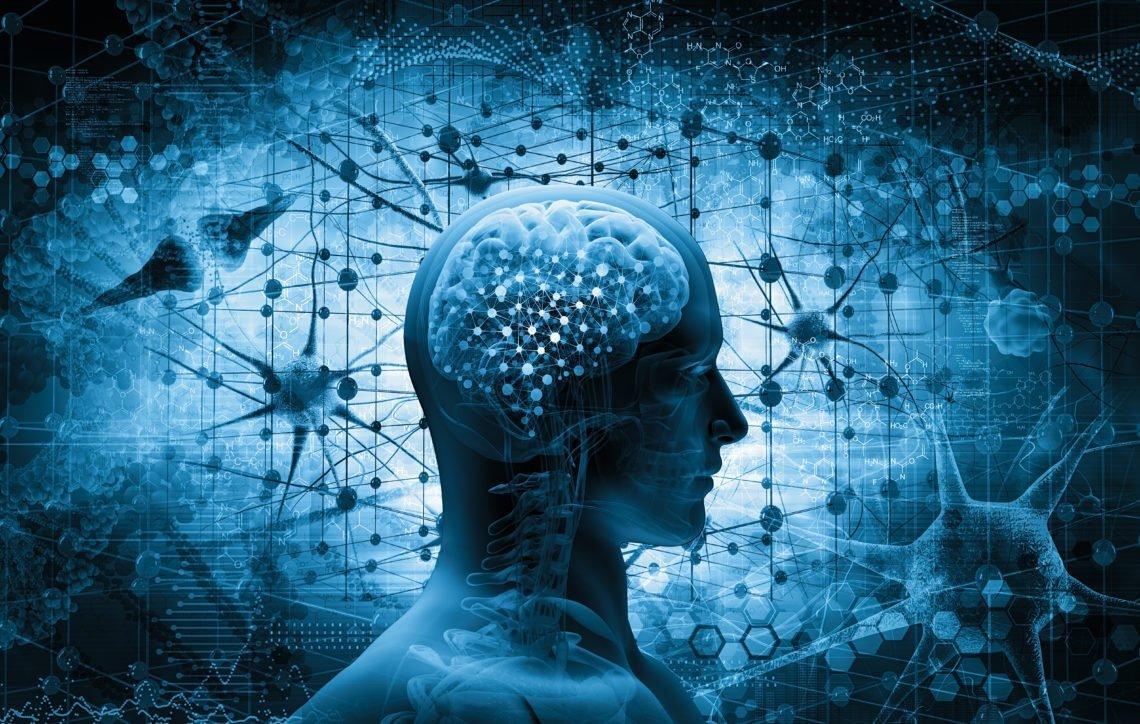 Neurogastronomía: La psicología de los 5 sentidos en la Experiencia de Cliente